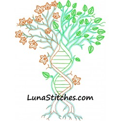 DNA Family Tree