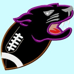 Panther or Puma on Football