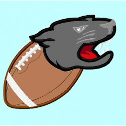 Panther or Puma on Football 2nd version