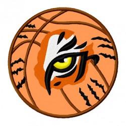 Tiger Eye on Basketball