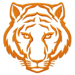Tiger Face Down