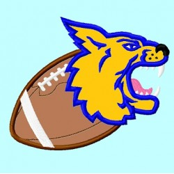 Wildcat or Bobcat  on Football 2nd Version